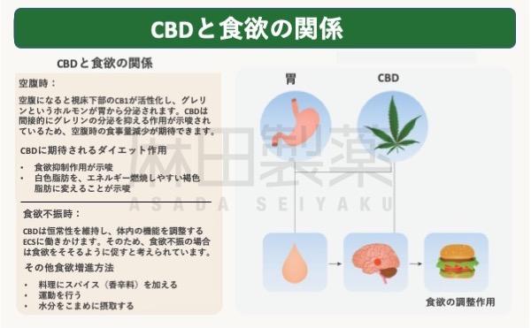 CBDと食欲の関係