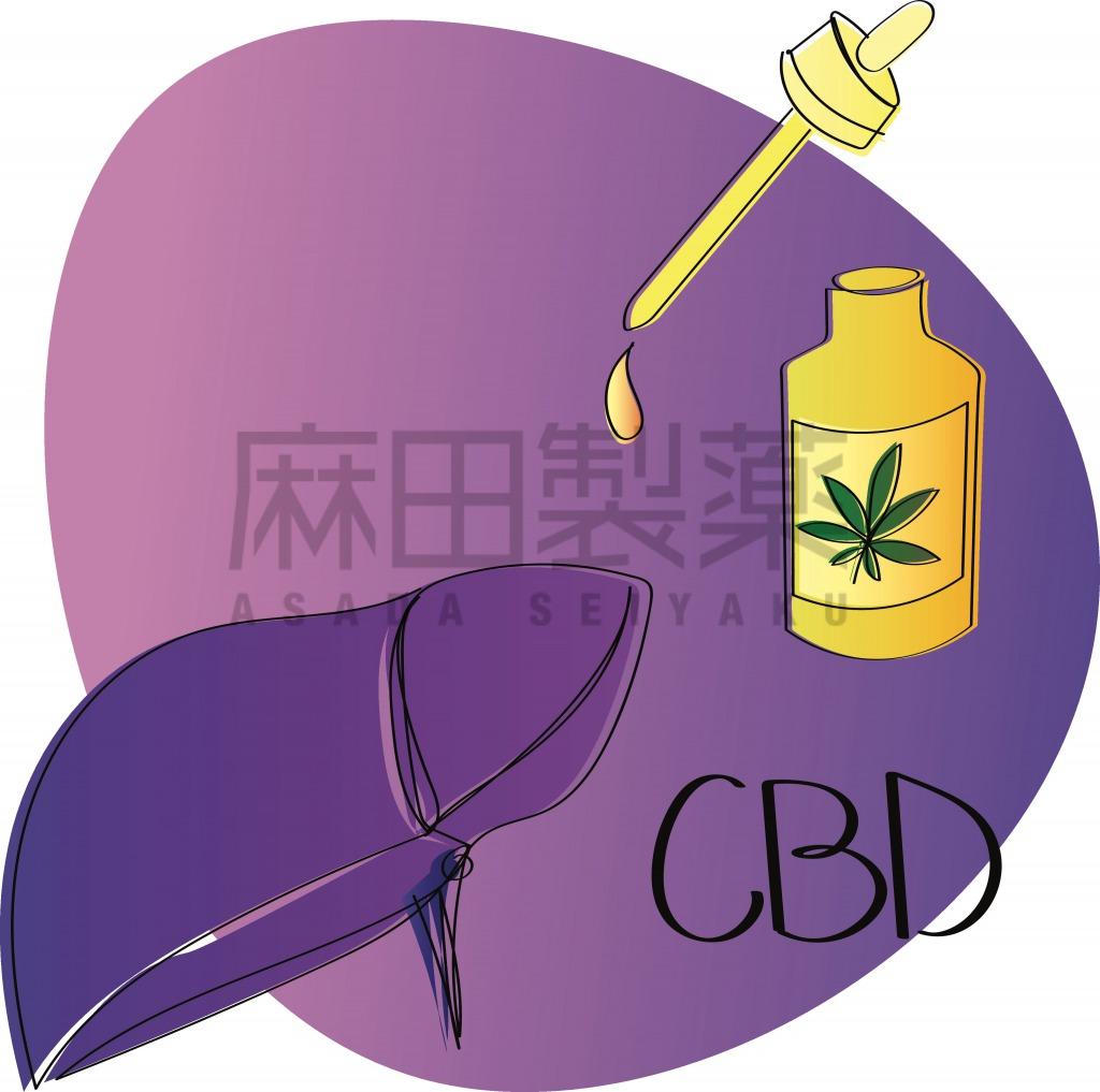 CBDの肝臓への影響